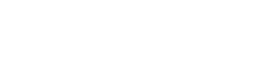 DunedinNZ logo